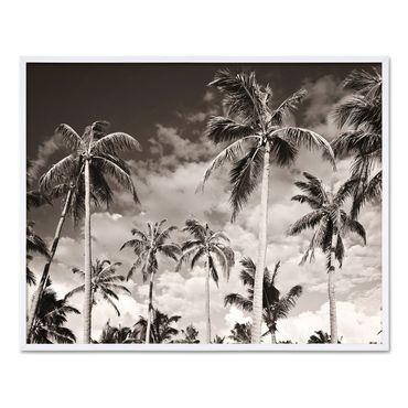 Poster mit Bilderrahmen Weiss 'Palmen' 30x40 cm schwarz-weiss Natur Landschaft Wechselrahmen