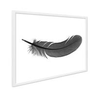 Design-Poster mit Bilderrahmen Weiss 'Feder' 30x40 cm schwarz-weiss Motiv Natur – Bild 1
