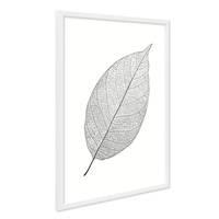 Design-Poster mit Bilderrahmen Weiss 'Blatt' 40x50 cm schwarz-weiss Motiv Natur Zeichnung Abstrakt