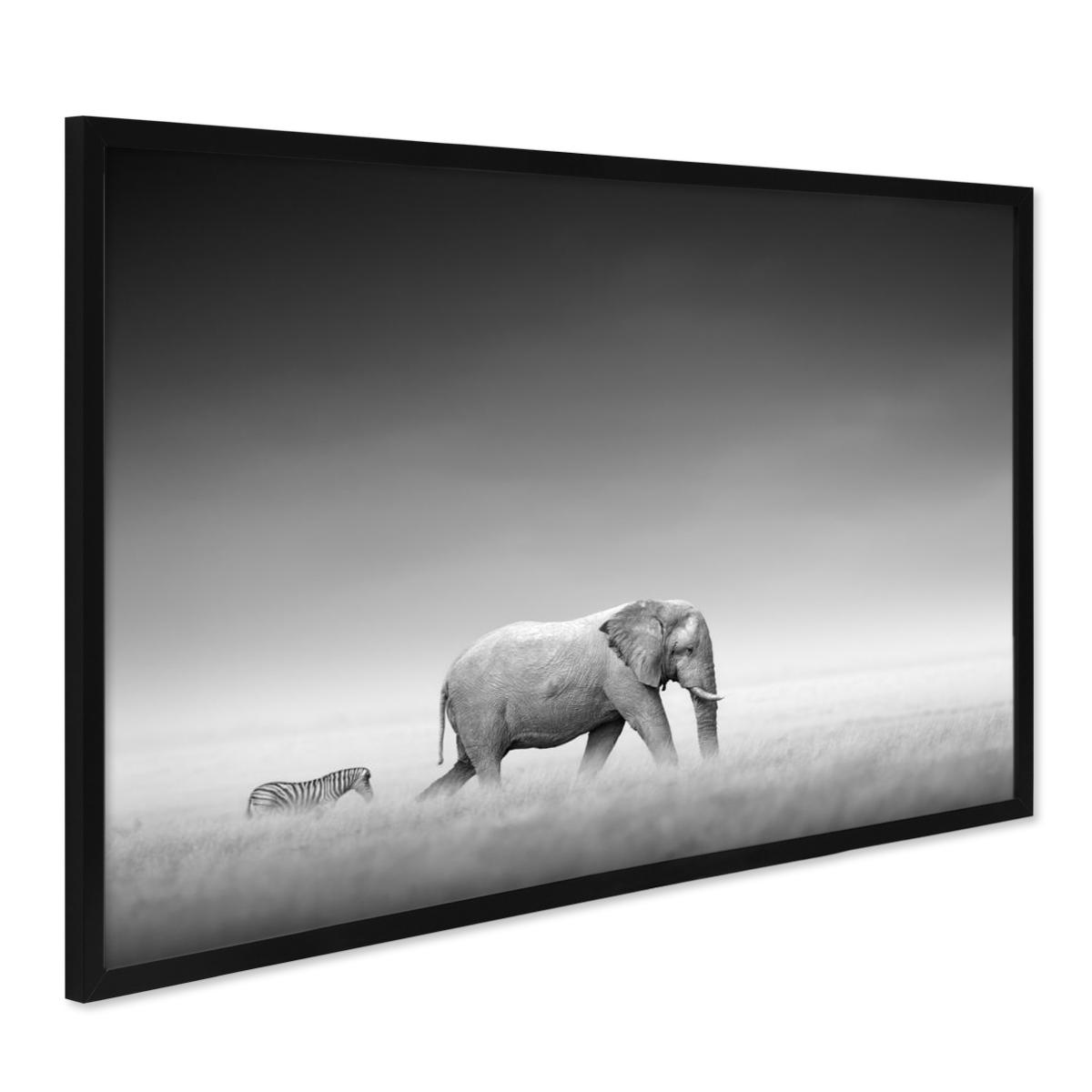 Poster mit Bilderrahmen Schwarz \'Elefant\' 40x50 cm schwarz-weiss ...