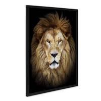 Poster mit Bilderrahmen Schwarz Löwe 40x50 cm Motiv Löwenkopf Foto Natur