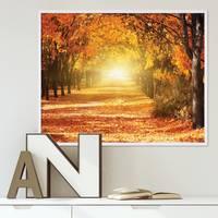 Poster mit Bilderrahmen Weiss 'Herbst' 40x50 cm Motiv Herbstwald Natur Landschaft Foto Sonnenuntergang – Bild 2