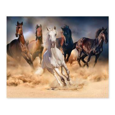 Poster 'Pferde' 40x50 cm Motiv Natur Wild Pferdeherde Foto