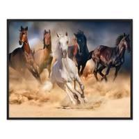 Poster mit Bilderrahmen Schwarz 'Pferde' 40x50 cm Motiv Natur Wild Pferdeherde Foto – Bild 3