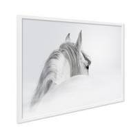 Design-Poster mit Bilderrahmen Weiss 'Pferd' 30x40 cm schwarz-weiss Motiv Pferdekopf Zeichnung