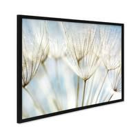 Poster 'Pusteblumen' 30x40 cm Motiv Natur Landschaft Foto Blumen – Bild 3