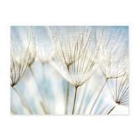 Poster 'Pusteblumen' 30x40 cm Motiv Natur Landschaft Foto Blumen