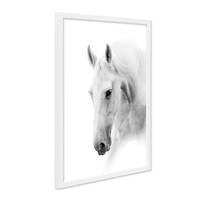 Poster mit Bilderrahmen Weiss Pferdekopf 30x40 cm schwarz-weiss Motiv Pferd Foto