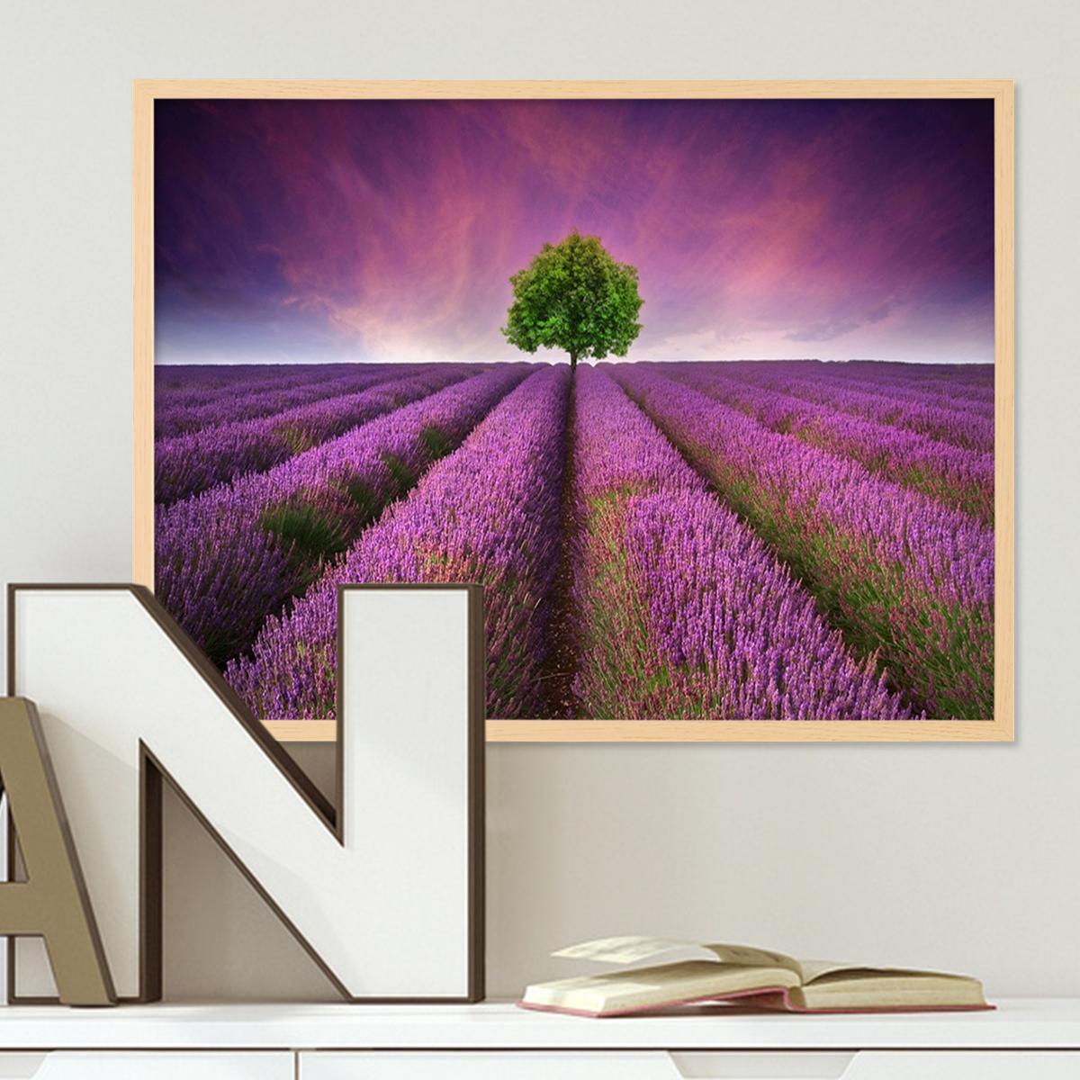 Poster mit Bilderrahmen Natur \'Lavendel\' 30x40 cm Motiv Natur ...