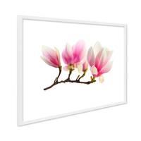 Poster mit Bilderrahmen Weiss 'Magnolienzweig' 30x40 cm Motiv Magnolia Blume Natur Foto