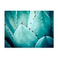 Poster 'Agave Abstrakt' 30x40 cm Motiv Natur Landschaft Foto Kaktus