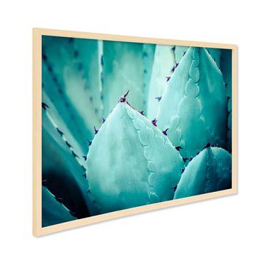 Poster mit Bilderrahmen Natur 'Agave Abstrakt' 30x40 cm Motiv Natur Landschaft Foto Kaktus