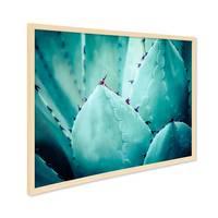 Poster mit Bilderrahmen Natur Agave Abstrakt 30x40 cm Motiv Natur Landschaft Foto Kaktus