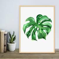 Design-Poster mit Bilderrahmen Natur 'Monstera' 30x40 cm Motiv Natur Aquarell Blatt Pflanze – Bild 3