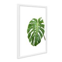 poster mit bilderrahmen weiss 39 monstera blatt 39 30x40 cm motiv natur foto pflanze poster natur. Black Bedroom Furniture Sets. Home Design Ideas