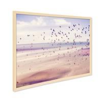 Poster mit Bilderrahmen Natur 'Vögel' 30x40 cm Motiv Natur Landschaft Nostalgie Foto