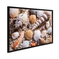 Poster mit Bilderrahmen Schwarz 'Muscheln' 30x40 cm Strandbild Foto Natur Landschaft