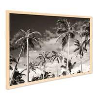 Poster mit Bilderrahmen Natur 'Palmen' 40x50 cm schwarz-weiss Motiv Natur Landschaft