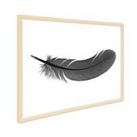 Design-Poster mit Bilderrahmen Natur 'Feder' 30x40 cm schwarz-weiss Motiv Natur