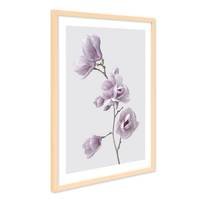Poster mit Bilderrahmen Natur 'Magnolien' 40x50 cm Motiv Natur Landschaft Fotografie