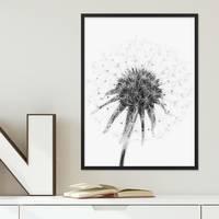 Design-Poster 'Pusteblume' 30x40 cm schwarz-weiss Motiv Natur Landschaft