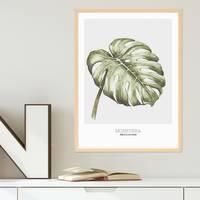 Poster mit Bilderrahmen Natur 'Monstera' 30x40 cm Aquarell Optik Küchenmotiv  – Bild 2
