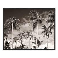 Poster 'Palmen unter kalifornischem Himmel' 40x50 cm Motiv Natur – Bild 3
