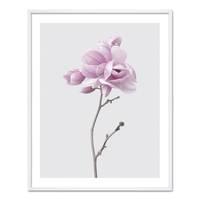 Poster 'Magnolia' 40x50 cm Motiv Natur Landschaft Fotografie – Bild 5