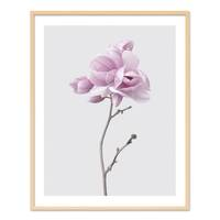 Poster 'Magnolia' 40x50 cm Motiv Natur Landschaft Fotografie – Bild 6
