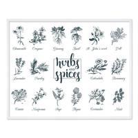 Poster 'Herbs and Spices' 40x50 cm Kräuter Gewürze Küchenbild – Bild 4