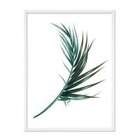 Poster 'Palmenblatt' 30x40 cm Motiv Natur Landschaft Palme – Bild 4