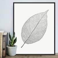 Design-Poster 'Blatt' 40x50 cm schwarz-weiss Natur Zeichnung – Bild 4