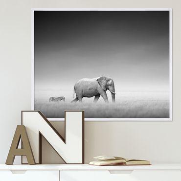 Poster 'Elefant' 40x50 cm schwarz-weiss Landschaft Zebra Afrika