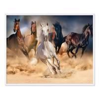 Poster 'Pferde' 40x50 cm Motiv Natur Wild Pferdeherde Foto – Bild 4