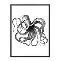 Poster 'Octopus' 30x40 cm schwarz-weiss Motiv Krake Zeichnung – Bild 3