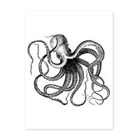 Poster 'Octopus' 30x40 cm schwarz-weiss Motiv Krake Zeichnung – Bild 2