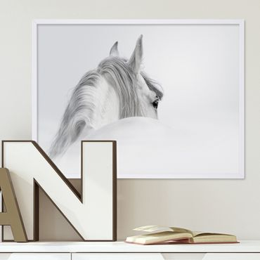 Design-Poster 'Pferd' 30x40 cm schwarz-weiss Motiv Pferdekopf