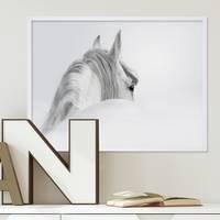 Design-Poster Pferd 30x40 cm schwarz-weiss Motiv Pferdekopf