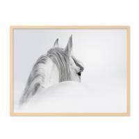 Design-Poster 'Pferd' 30x40 cm schwarz-weiss Motiv Pferdekopf – Bild 5