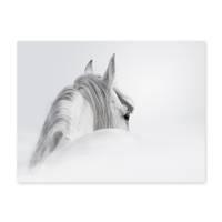Design-Poster 'Pferd' 30x40 cm schwarz-weiss Motiv Pferdekopf – Bild 2
