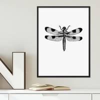 Design-Poster Libelle 30x40 cm schwarz-weiss Zeichnung Insekt