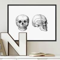 Design-Poster Skulls 30x40 cm schwarz-weiss Totenkopf Zeichnung