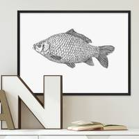Design-Poster Karpfen 30x40 cm schwarz-weiss Fisch Zeichnung Koi