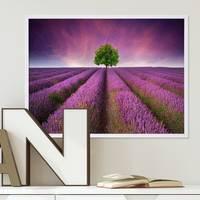 Poster 'Lavendel' 30x40 cm Motiv Natur Landschaft Foto Blumenwiese – Bild 1