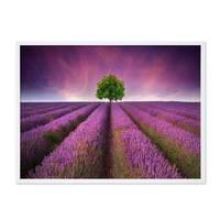 Poster 'Lavendel' 30x40 cm Motiv Natur Landschaft Foto Blumenwiese – Bild 4