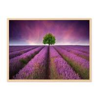 Poster 'Lavendel' 30x40 cm Motiv Natur Landschaft Foto Blumenwiese – Bild 5