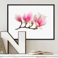 Poster Magnolienzweig 30x40 cm Motiv Magnolia Blume Natur Foto