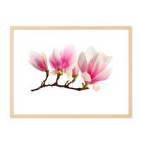 Poster 'Magnolienzweig' 30x40 cm Motiv Magnolia Blume Natur Foto – Bild 5