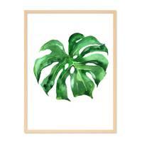 Design-Poster 'Monstera' 30x40 cm Natur Aquarell Blatt Pflanze – Bild 6