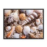 Poster 'Muscheln' 30x40 cm Strandbild Natur Landschaft Maritim – Bild 3